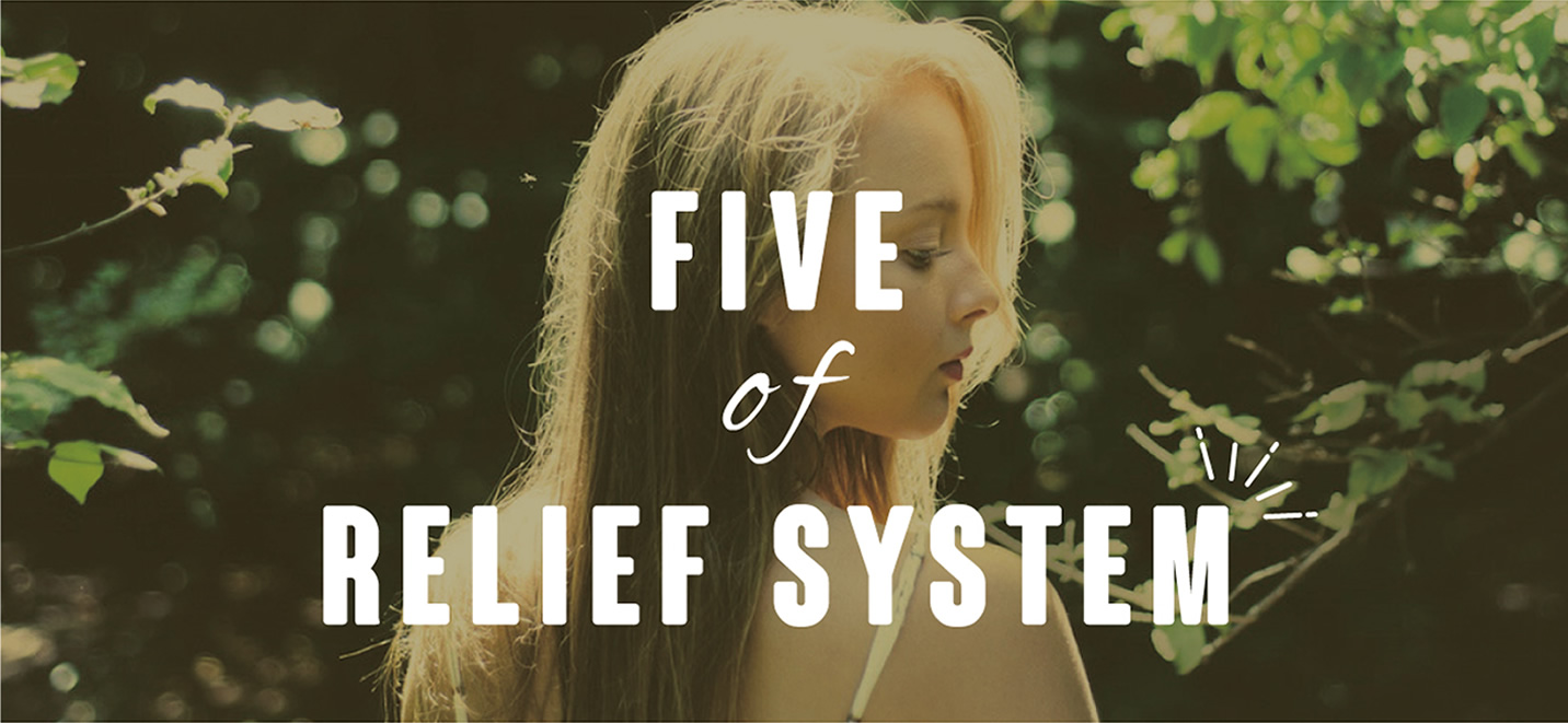 safe-system