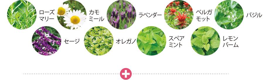 image7 (2)